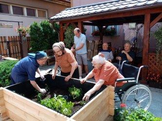 Projekt Mobilné záhradky